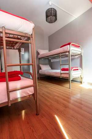 Picture of Bed in 4-Bed Female Dormitory Room